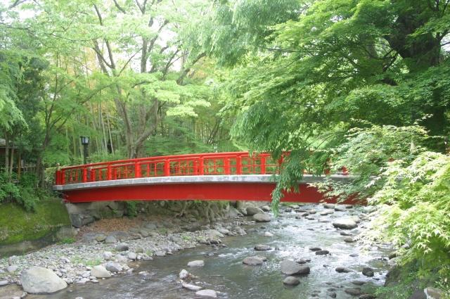 緑が清々しい桂橋