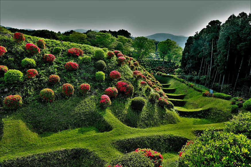 山中城の特徴は地形を生かした山城ということです。障子堀と畝堀が有名です。