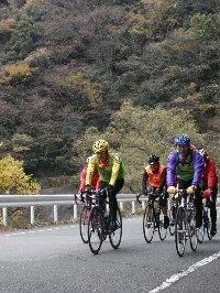 三倉や天方地区の交通量が少ない区間ではロードサイクルの姿も多く見られる。