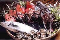 地元でとれる魚介類のいろいろ