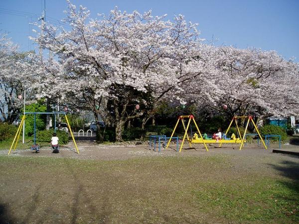 公園の西側には、日本にお茶を伝えたといわれる栄西禅師の石碑があり、毎年4月の新茶の季節に供養祭が行われます。