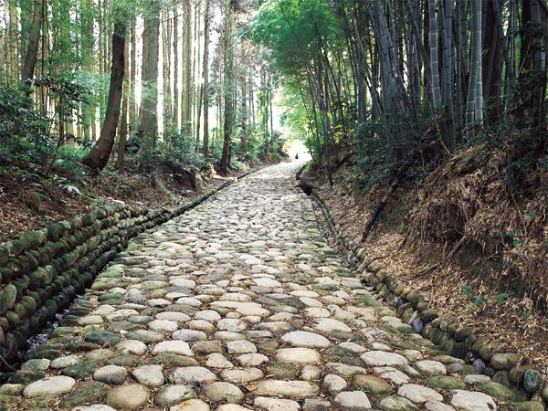 旧東海道石畳(金谷坂)1