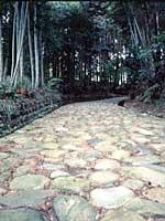 旧東海道石畳(金谷坂)2