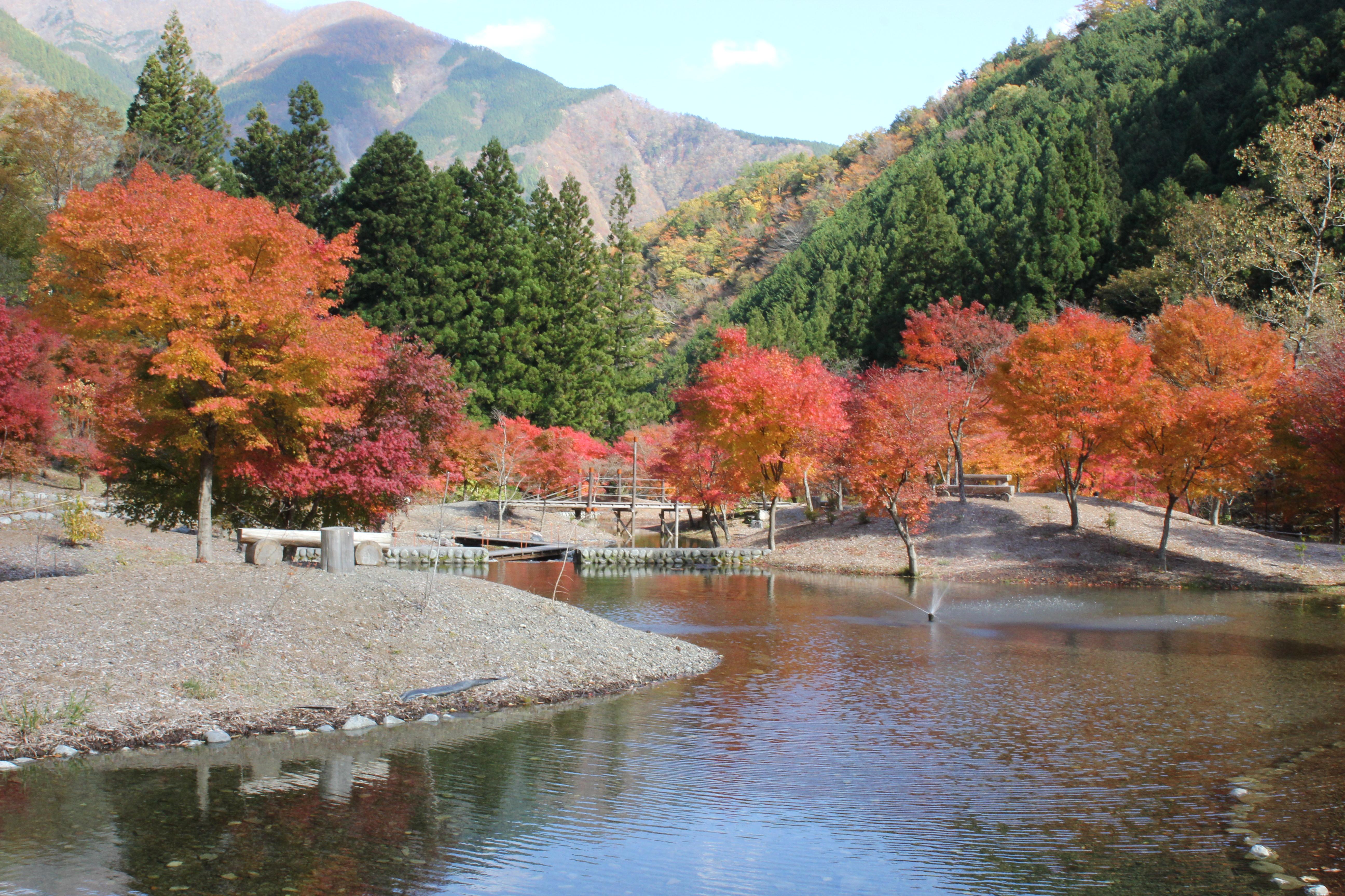 草履石公園の紅葉
