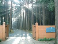 秩父宮記念公園正門