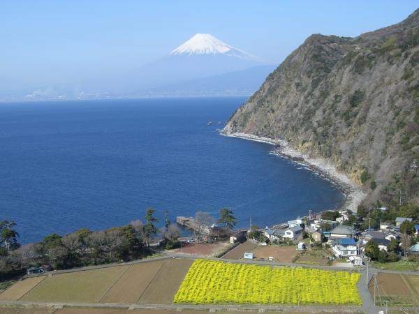 駿河湾富嶽三十六景-第十一景-煌めきの丘