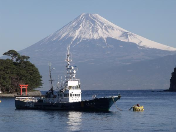 駿河湾富嶽三十六景-第十二景-沼津市富士見通り