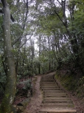 大師山自然観察の森