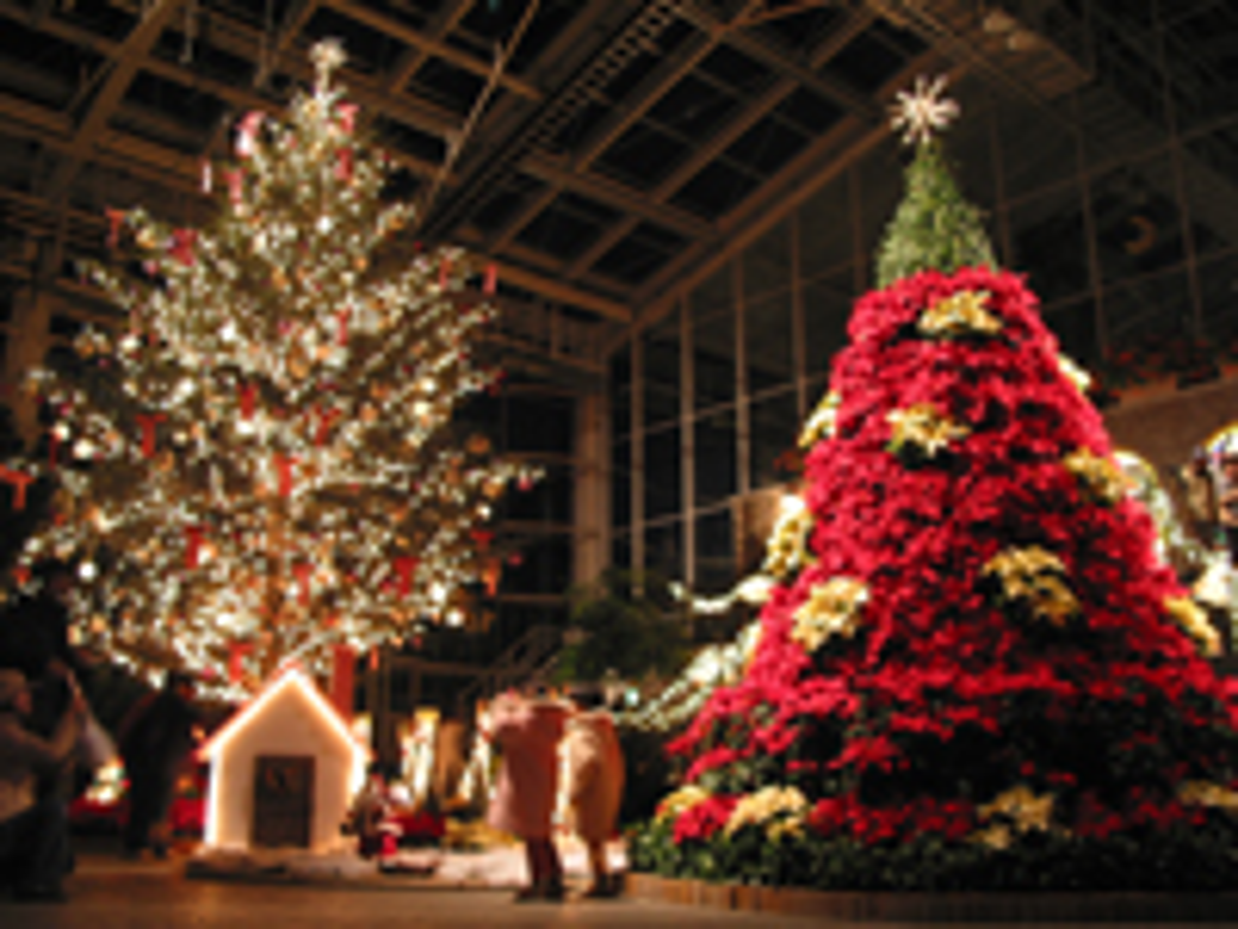 クリスマス夜間開園