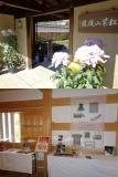 菊と技の響宴 上段:紅葉山庭園の入り口に飾られた見事な菊花。下段:坤櫓で技の道具を展示。これらの道具から見事な伝統工芸品が生まれる。