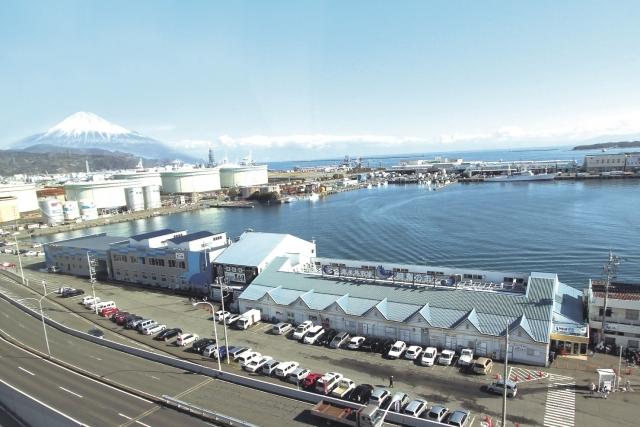 """""""清水港地元の台所""""清水魚市場の仲卸業者が直接販売する日本初の施設。"""