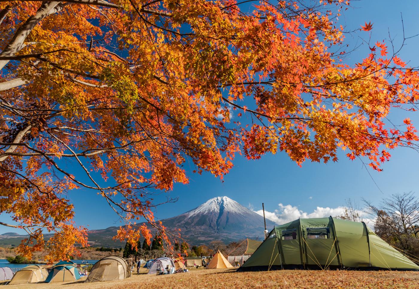 田貫湖キャンプ場画像1