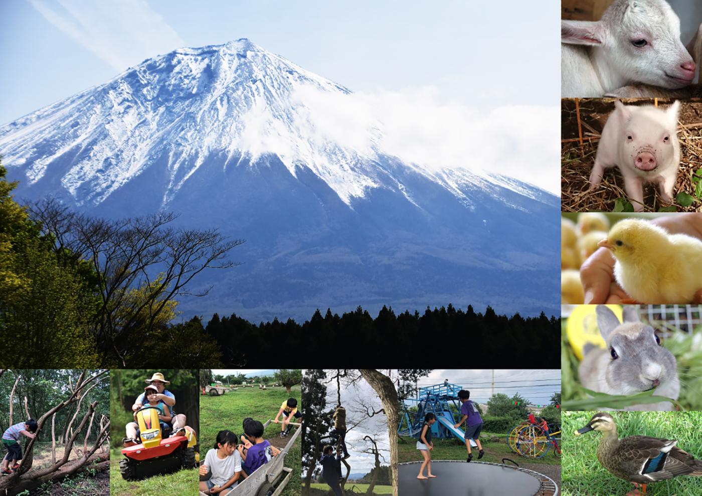 富士山ワイルドアドベンチャー画像1