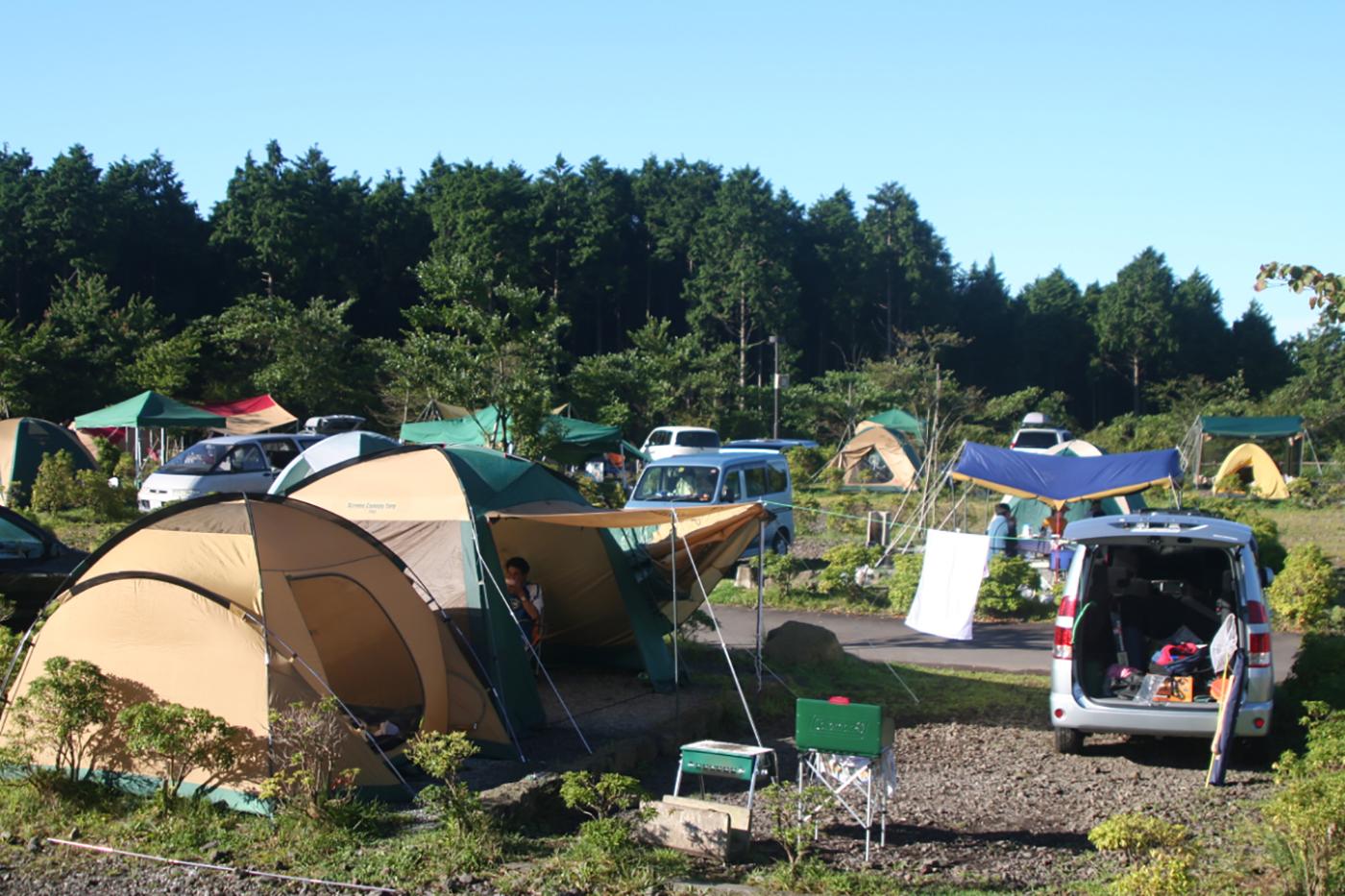 富士山こどもの国キャンプ場画像1