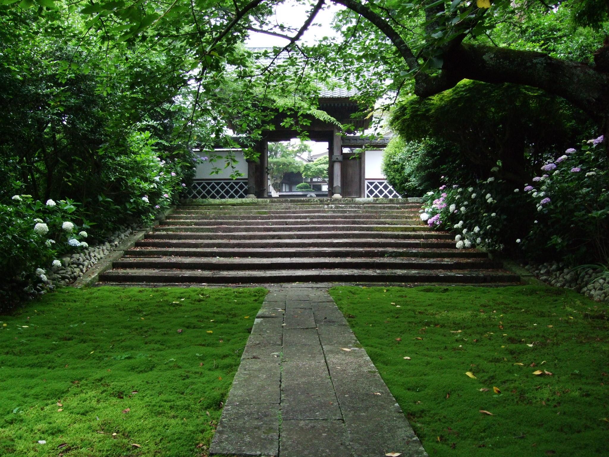杉苔のなかに伸びる参道と山門